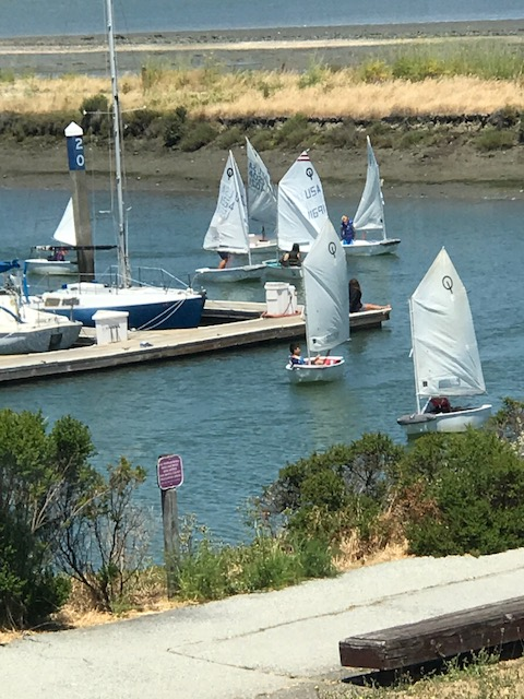 Youth Sailing 6-30-2017 (4)